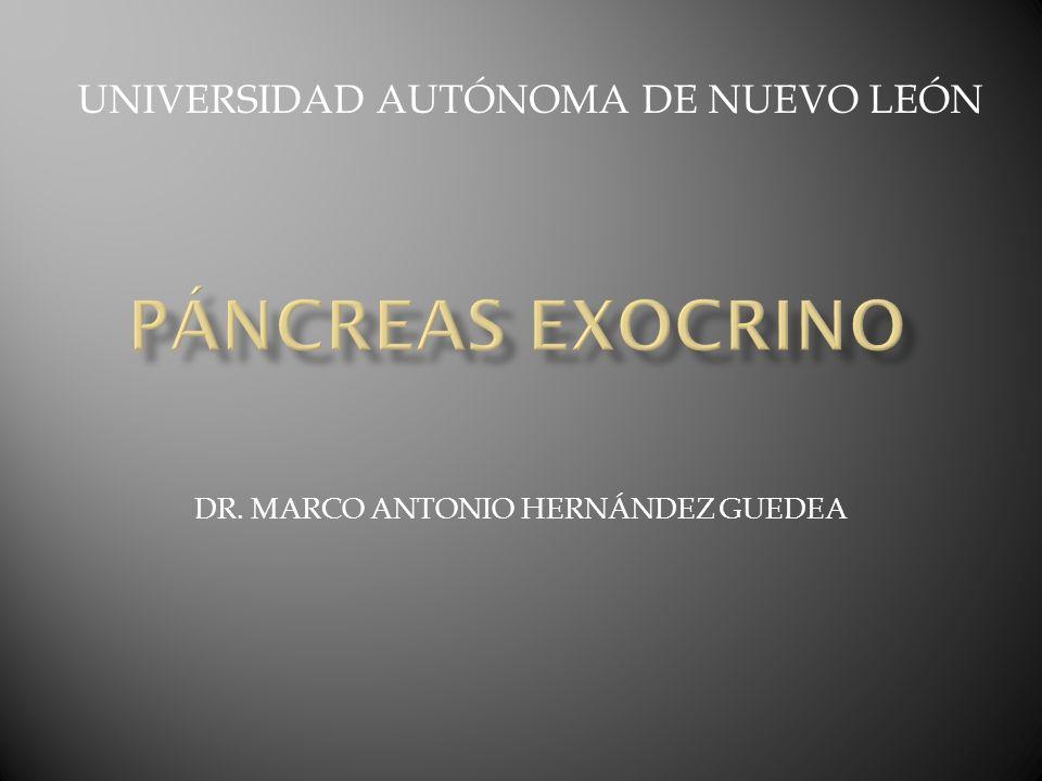 Diagnóstico diferencial de la pancreatitis aguda Colecistitis o colangitis Isquemia o infarto mesentérico Obstrucción intesntinal Perforación de víscera hueca