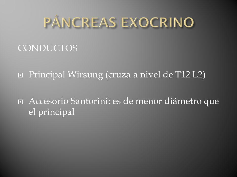 CPRE en evaluación tardía de probables lesiones de conducto pancreático