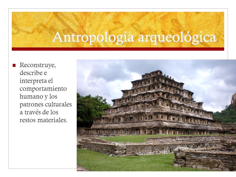 Antropología arqueológica Reconstruye, describe e interpreta el comportamiento humano y los patrones culturales a través de los restos materiales.