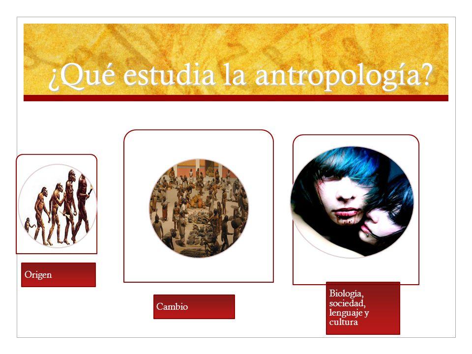 ¿Qué estudia la antropología? Origen Cambio Biología, sociedad, lenguaje y cultura