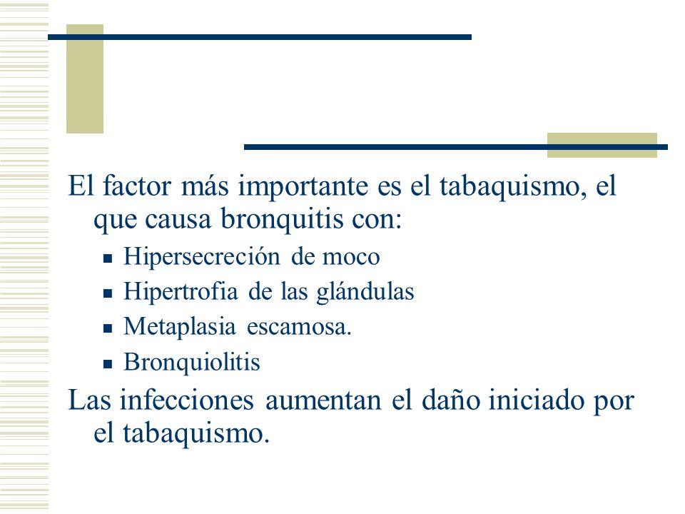 El factor más importante es el tabaquismo, el que causa bronquitis con: Hipersecreción de moco Hipertrofia de las glándulas Metaplasia escamosa.