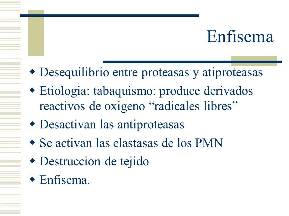 Enfisema Desequilibrio entre proteasas y atiproteasas Etiologia: tabaquismo: produce derivados reactivos de oxigeno radicales libres Desactivan las an