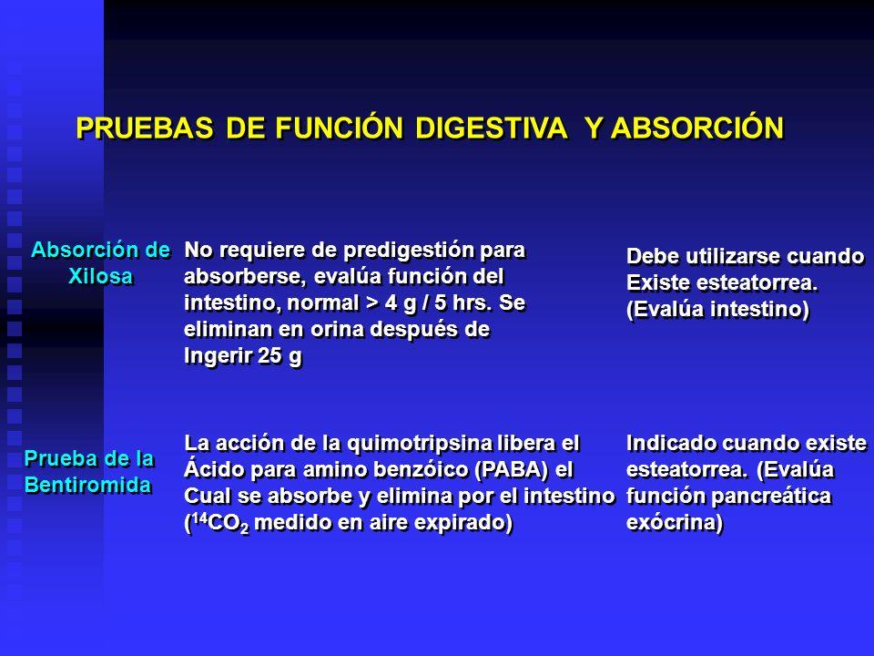 PRUEBAS DE FUNCIÓN DIGESTIVA Y ABSORCIÓN Absorción de Xilosa Absorción de Xilosa No requiere de predigestión para absorberse, evalúa función del intes