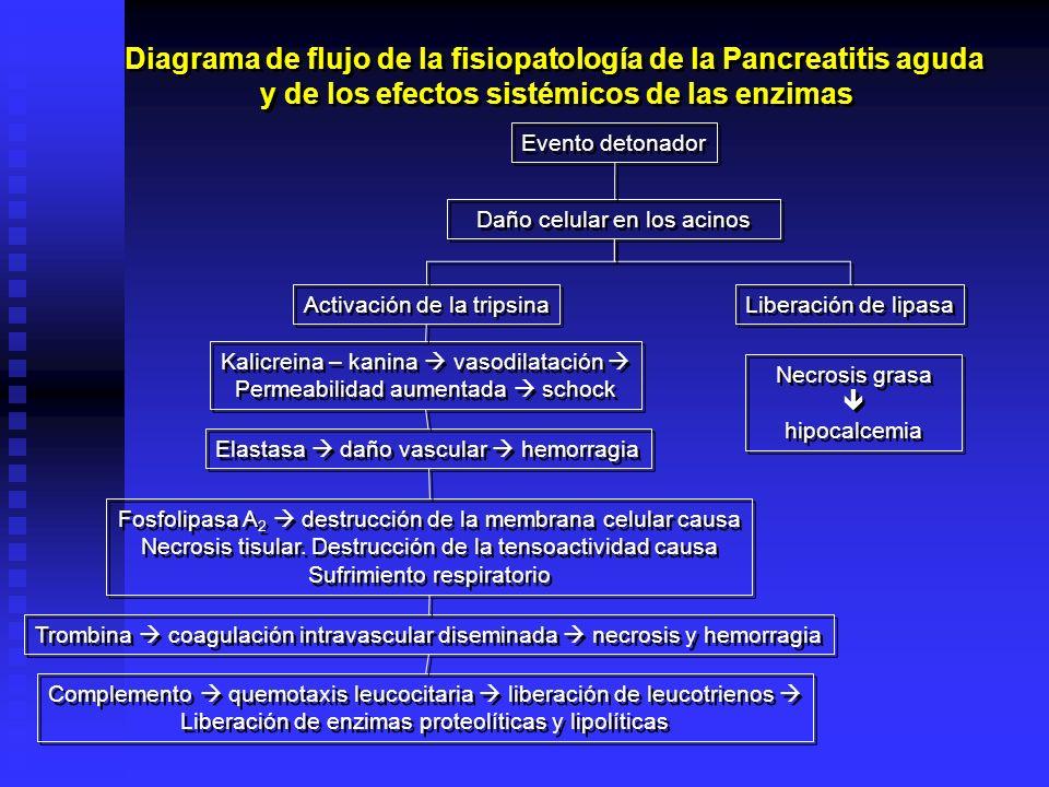 Diagrama de flujo de la fisiopatología de la Pancreatitis aguda y de los efectos sistémicos de las enzimas Diagrama de flujo de la fisiopatología de l