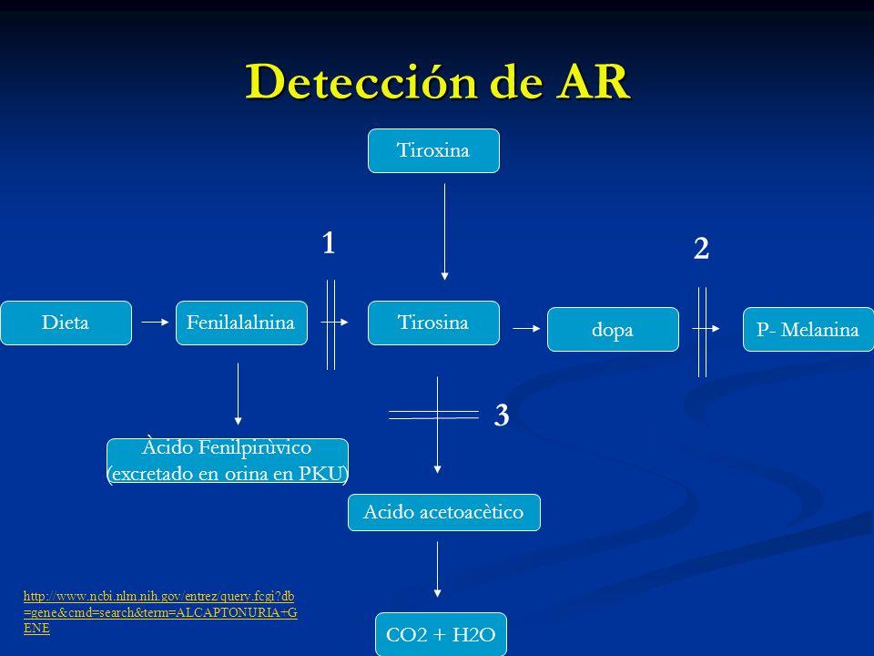 Detección de AR CO2 + H2O Tiroxina Tirosina dopaP- Melanina FenilalalninaDieta Àcido Fenilpirùvico (excretado en orina en PKU) Acido acetoacètico 2 1