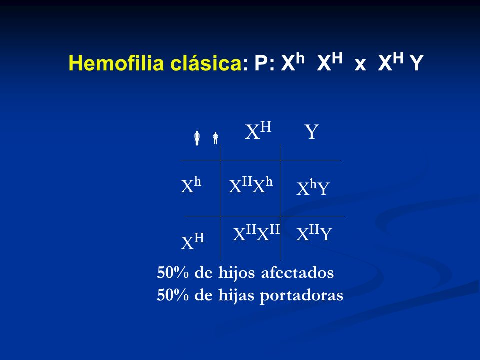 XhYXhY XHXH Y XhXh XHXH XHYXHY XHXhXHXh XHXHXHXH 50% de hijos afectados 50% de hijas portadoras Hemofilia clásica: P: X h X H x X H Y