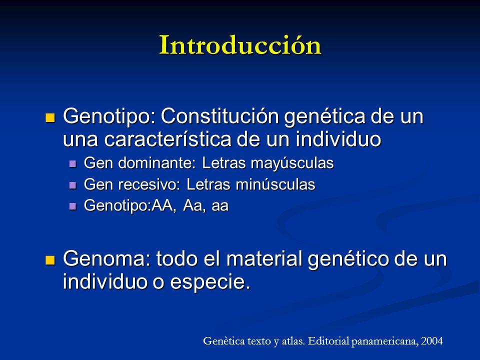 Humanos 30,000 genes GENOMA Chimpancé 30,000 genes A.