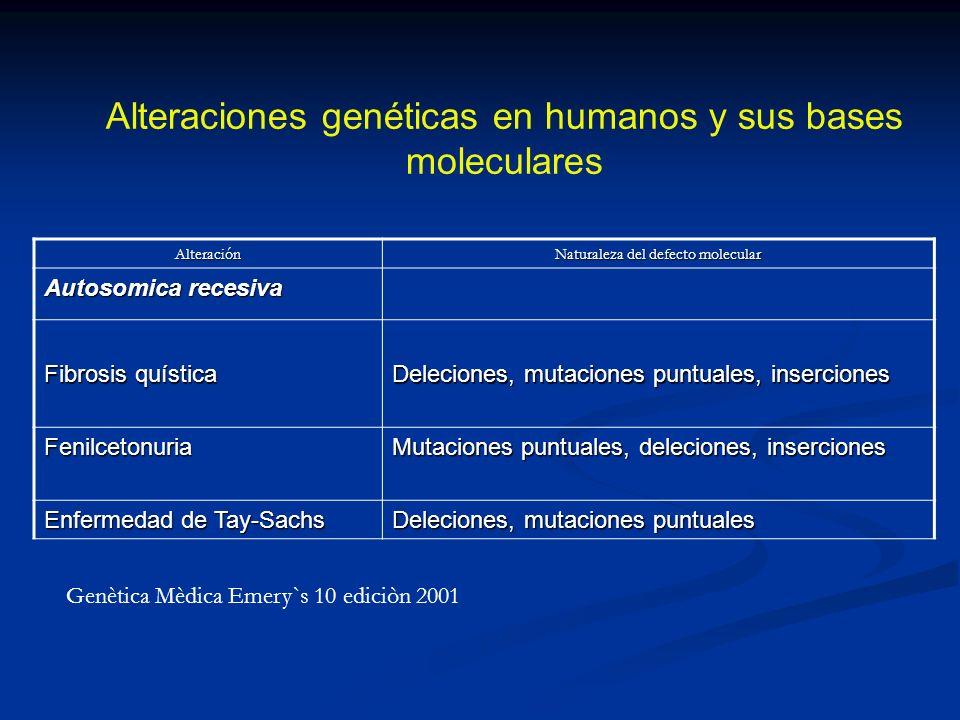 Alteración Naturaleza del defecto molecular Autosomica recesiva Fibrosis quística Deleciones, mutaciones puntuales, inserciones Fenilcetonuria Mutacio