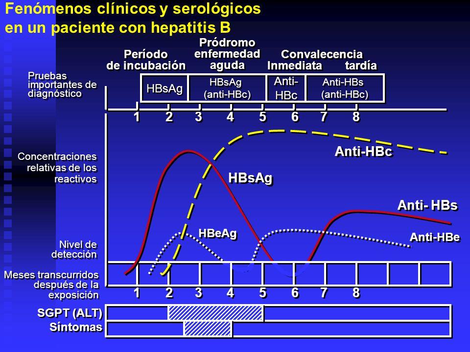 1 2 3 4 5 6 7 8 Concentraciones relativas de los reactivos Concentraciones relativas de los reactivos Pruebas importantes de diagnóstico Pruebas impor