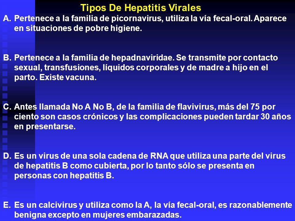 A.Pertenece a la familia de picornavirus, utiliza la vía fecal-oral. Aparece en situaciones de pobre higiene. B.Pertenece a la familia de hepadnavirid