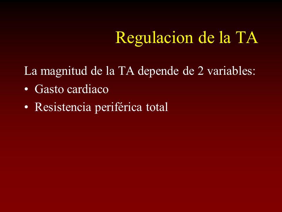 Regulacion de la TA La magnitud de la TA depende de 2 variables: Gasto cardiaco Resistencia periférica total