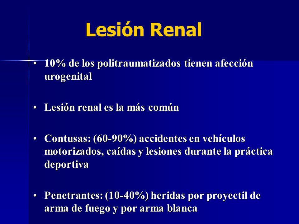 Hematuria es el mejor indicador de lesión del sistema urinario (>5 RBC/HPF) Hematuria es el mejor indicador de lesión del sistema urinario (>5 RBC/HPF) Grado de hematuria no se correlaciona con la severidad de la lesión renal Grado de hematuria no se correlaciona con la severidad de la lesión renal Dipstick 97% especificidad y sensibilidad Dipstick 97% especificidad y sensibilidad Lesión Renal