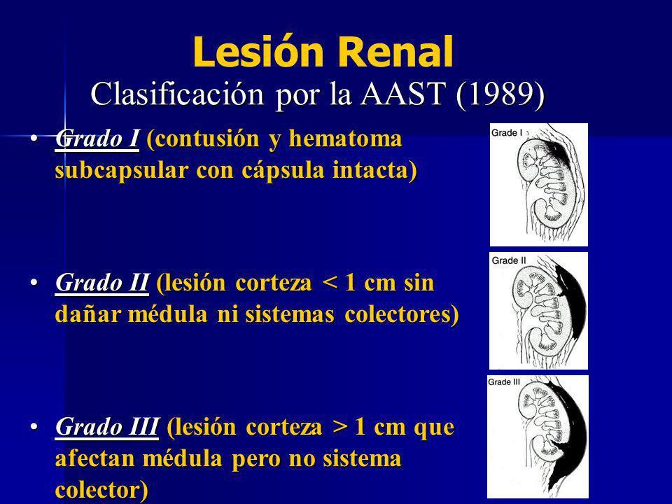 Grado IV (afección sistema colector y/o lesión vascular c/ hematoma localizado)Grado IV (afección sistema colector y/o lesión vascular c/ hematoma localizado) Grado V (lesiones profundas múltiples y/o lesión vascularc/hemoragia extensa ó trombosis de vasos principales)Grado V (lesiones profundas múltiples y/o lesión vascularc/hemoragia extensa ó trombosis de vasos principales) Lesión Renal