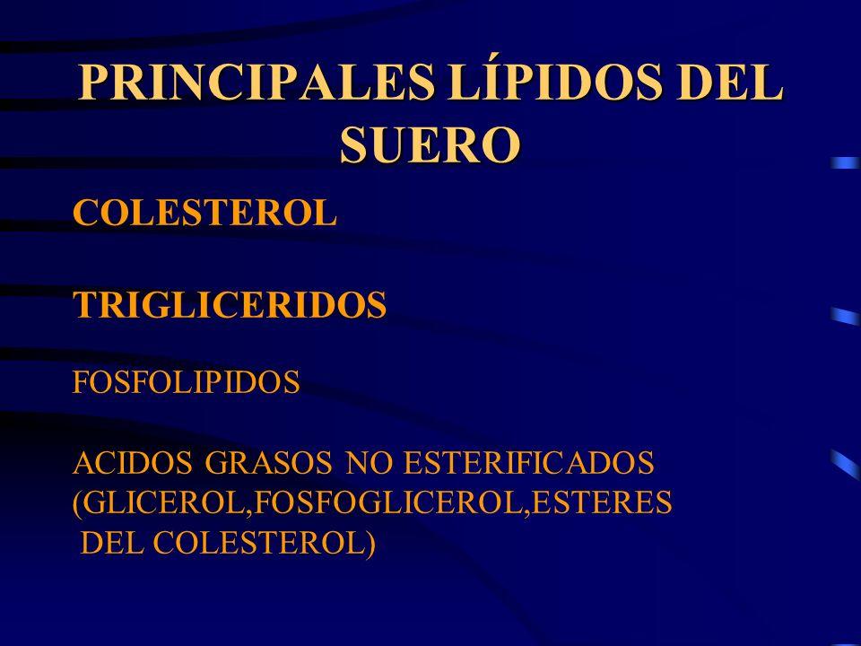 PRINCIPALES LÍPIDOS DEL SUERO COLESTEROL TRIGLICERIDOS FOSFOLIPIDOS ACIDOS GRASOS NO ESTERIFICADOS (GLICEROL,FOSFOGLICEROL,ESTERES DEL COLESTEROL)