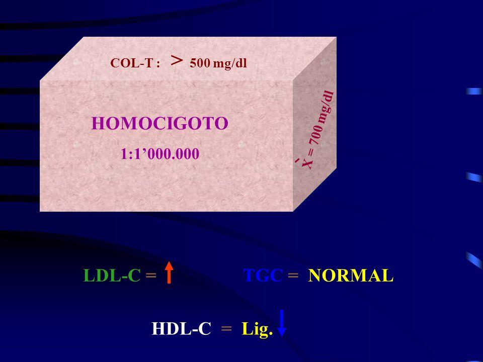 HOMOCIGOTO 1:1000.000 COL-T : > 500 mg/dl X = 700 mg/dl LDL-C =TGC = NORMAL HDL-C = Lig.