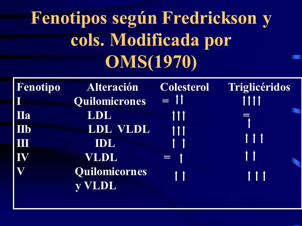 Fenotipos según Fredrickson y cols. Modificada por OMS(1970) Fenotipo Alteración Colesterol Triglicéridos I Quilomicrones = IIa LDL = IIb LDL VLDL III