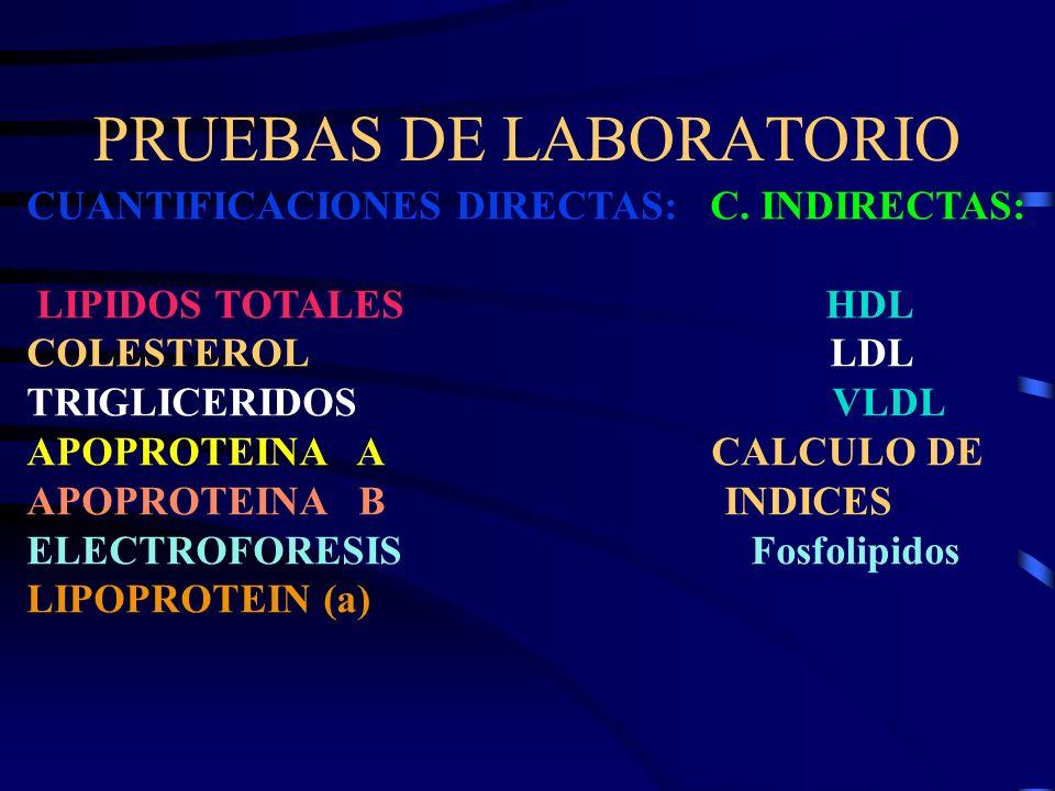 PRUEBAS DE LABORATORIO CUANTIFICACIONES DIRECTAS: C. INDIRECTAS: LIPIDOS TOTALES HDL COLESTEROL LDL TRIGLICERIDOS VLDL APOPROTEINA A CALCULO DE APOPRO
