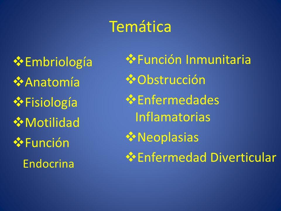 Temática Embriología Anatomía Fisiología Motilidad Función Endocrina Función Inmunitaria Obstrucción Enfermedades Inflamatorias Neoplasias Enfermedad