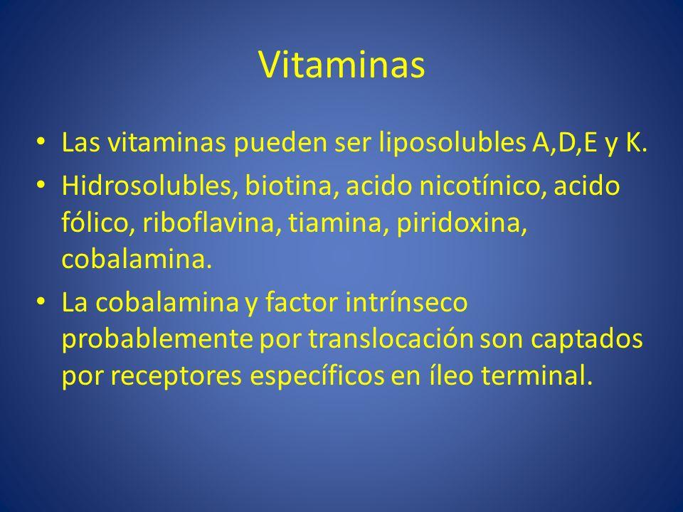 Vitaminas Las vitaminas pueden ser liposolubles A,D,E y K. Hidrosolubles, biotina, acido nicotínico, acido fólico, riboflavina, tiamina, piridoxina, c
