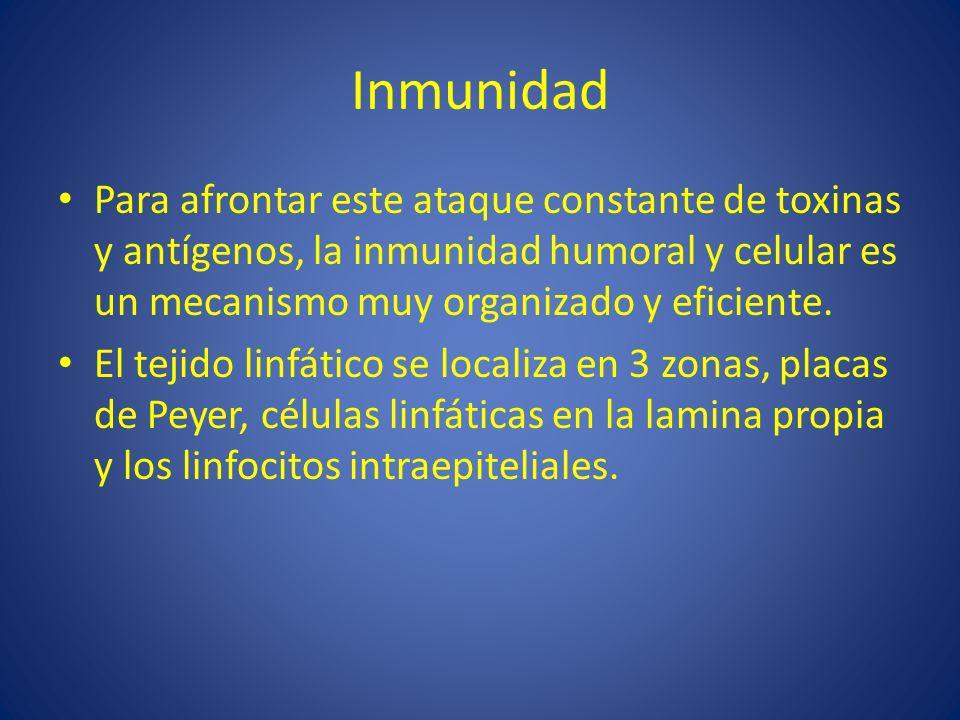 Inmunidad Para afrontar este ataque constante de toxinas y antígenos, la inmunidad humoral y celular es un mecanismo muy organizado y eficiente. El te