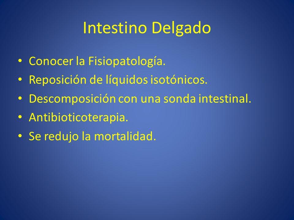 Intestino Delgado Conocer la Fisiopatología. Reposición de líquidos isotónicos. Descomposición con una sonda intestinal. Antibioticoterapia. Se redujo