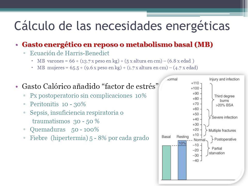 Cálculo de las necesidades energéticas Gasto energético en reposo o metabolismo basal (MB)Gasto energético en reposo o metabolismo basal (MB) Ecuación