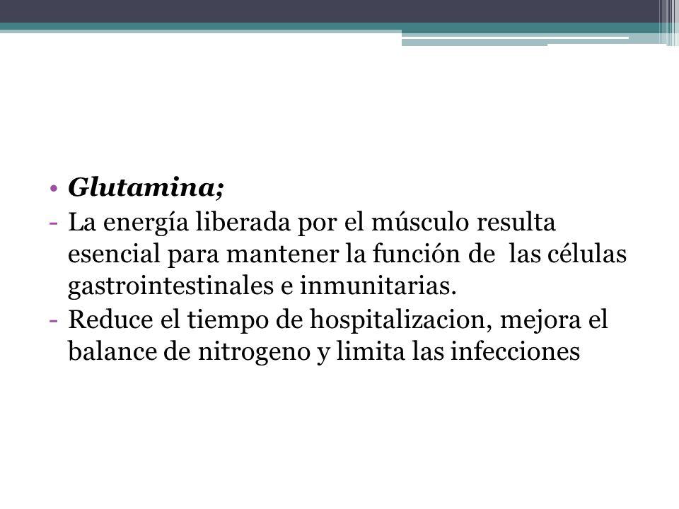 Glutamina; -La energía liberada por el músculo resulta esencial para mantener la función de las células gastrointestinales e inmunitarias. -Reduce el