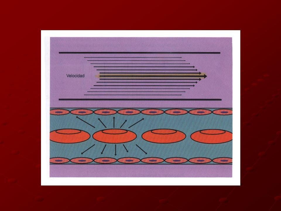 PLAQUETAS Y HEMOSTASIA Fragmentos citoplasmáticos del megacariocito 2 a 3 µm de Ө Circulan 10 días Gránulos y densos COAGULOAdhesión Depende de receptores específicos FvW Activación Esferas con pseudópodos
