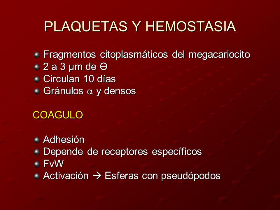 PLAQUETAS Y HEMOSTASIA Fragmentos citoplasmáticos del megacariocito 2 a 3 µm de Ө Circulan 10 días Gránulos y densos COAGULOAdhesión Depende de recept