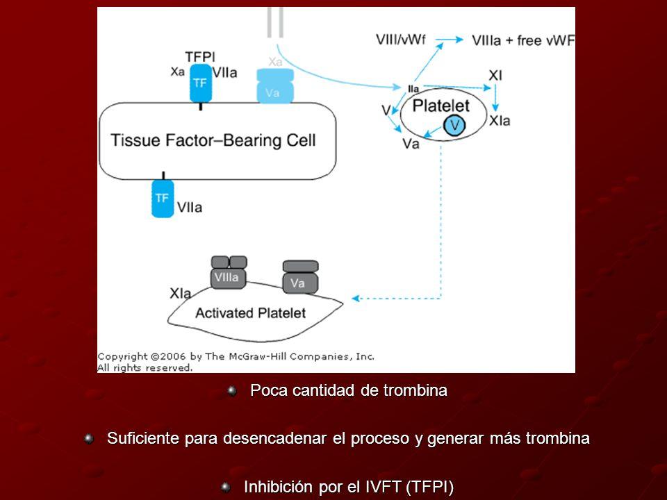 Poca cantidad de trombina Suficiente para desencadenar el proceso y generar más trombina Inhibición por el IVFT (TFPI)