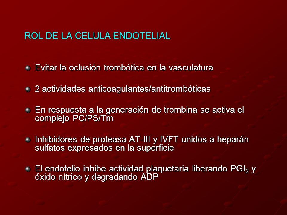 ROL DE LA CELULA ENDOTELIAL Evitar la oclusión trombótica en la vasculatura 2 actividades anticoagulantes/antitrombóticas En respuesta a la generación