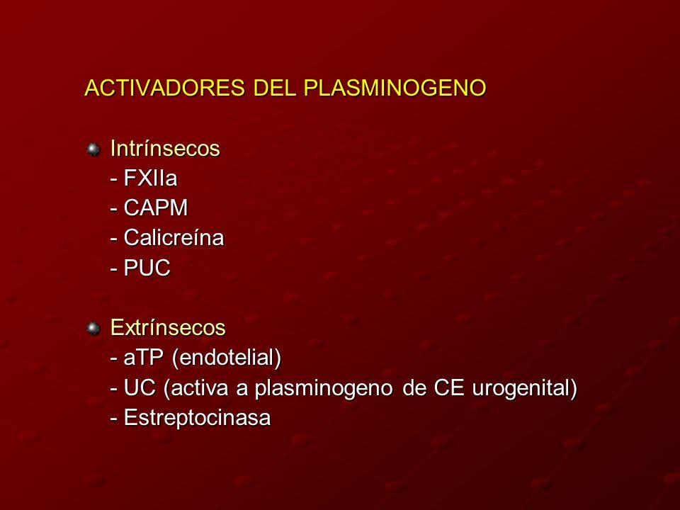 ACTIVADORES DEL PLASMINOGENO Intrínsecos - FXIIa - CAPM - Calicreína - PUC Extrínsecos - aTP (endotelial) - UC (activa a plasminogeno de CE urogenital