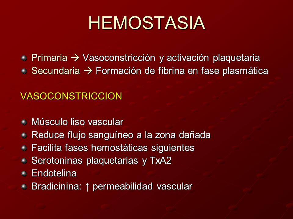 HEMOSTASIA Primaria Vasoconstricción y activación plaquetaria Secundaria Formación de fibrina en fase plasmática VASOCONSTRICCION Músculo liso vascula
