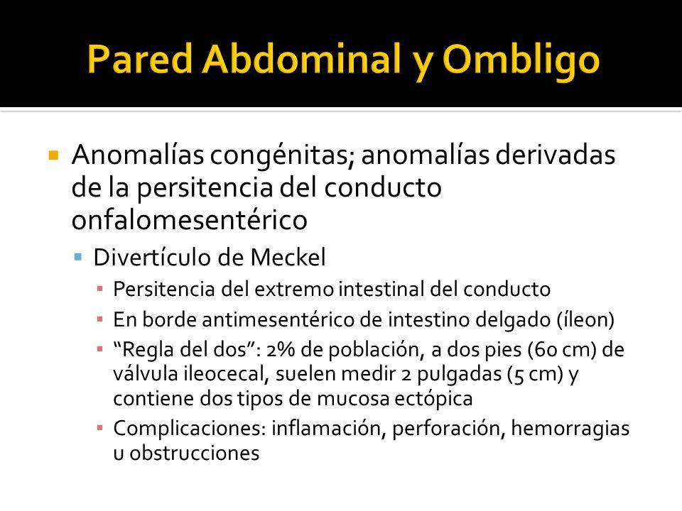 Anomalías congénitas; anomalías derivadas de la persitencia del conducto onfalomesentérico Divertículo de Meckel Persitencia del extremo intestinal de