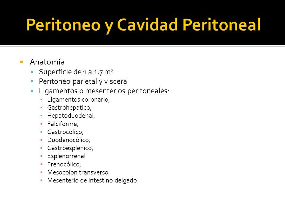 Anatomía Superficie de 1 a 1.7 m 2 Peritoneo parietal y visceral Ligamentos o mesenterios peritoneales: Ligamentos coronario, Gastrohepático, Hepatodu