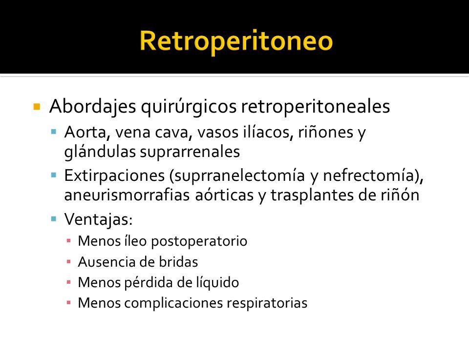 Abordajes quirúrgicos retroperitoneales Aorta, vena cava, vasos ilíacos, riñones y glándulas suprarrenales Extirpaciones (suprranelectomía y nefrectom