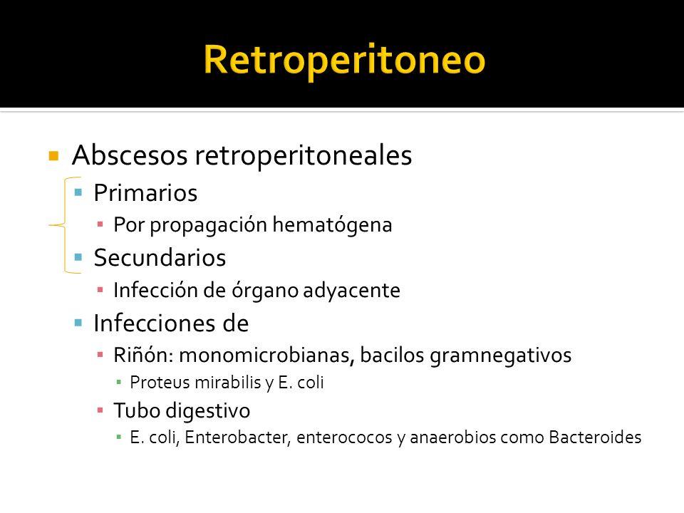 Abscesos retroperitoneales Primarios Por propagación hematógena Secundarios Infección de órgano adyacente Infecciones de Riñón: monomicrobianas, bacil