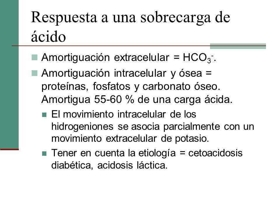 Respuesta a una sobrecarga de ácido Amortiguación extracelular = HCO 3 -. Amortiguación intracelular y ósea = proteínas, fosfatos y carbonato óseo. Am