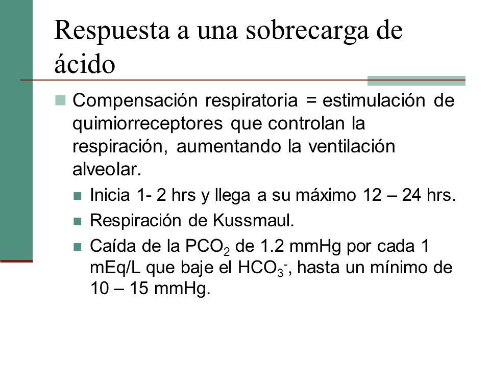 Respuesta a una sobrecarga de ácido Compensación respiratoria = estimulación de quimiorreceptores que controlan la respiración, aumentando la ventilac