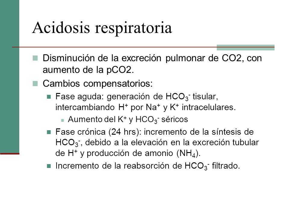 Acidosis respiratoria Disminución de la excreción pulmonar de CO2, con aumento de la pCO2. Cambios compensatorios: Fase aguda: generación de HCO 3 - t