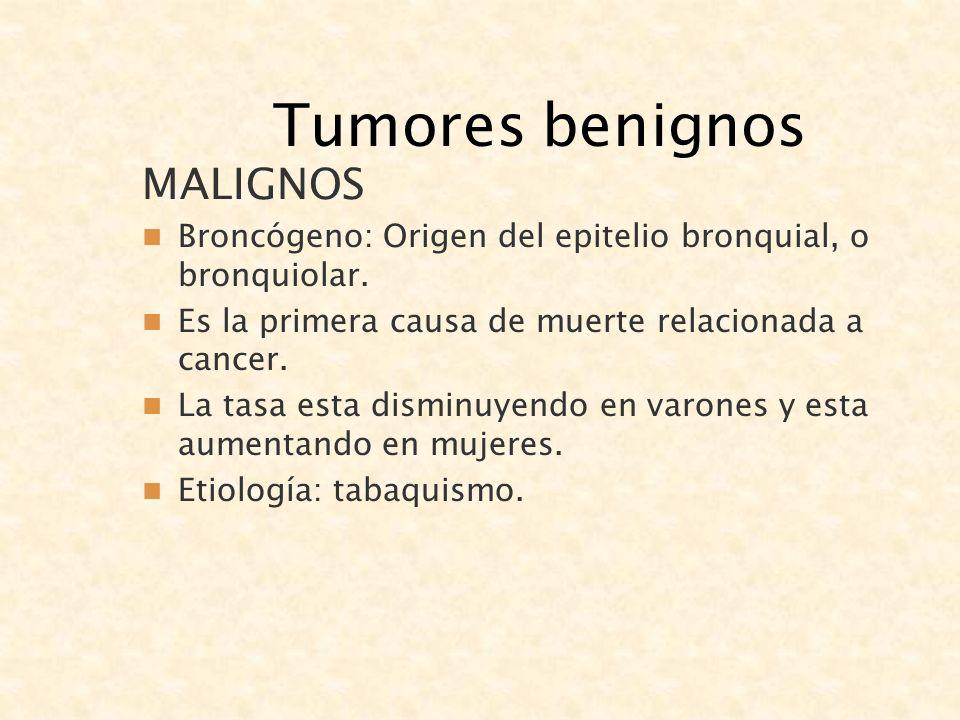 Tumores benignos MALIGNOS Broncógeno: Origen del epitelio bronquial, o bronquiolar. Es la primera causa de muerte relacionada a cancer. La tasa esta d