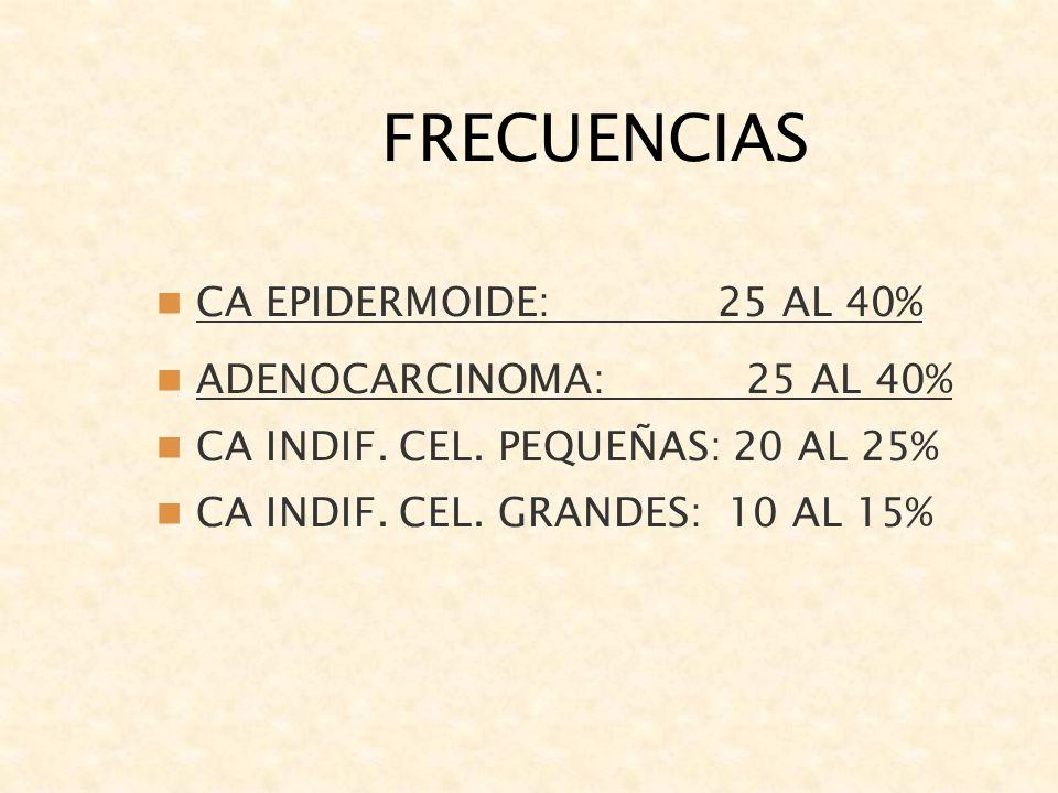 FRECUENCIAS CA EPIDERMOIDE: 25 AL 40% ADENOCARCINOMA: 25 AL 40% CA INDIF. CEL. PEQUEÑAS: 20 AL 25% CA INDIF. CEL. GRANDES: 10 AL 15%