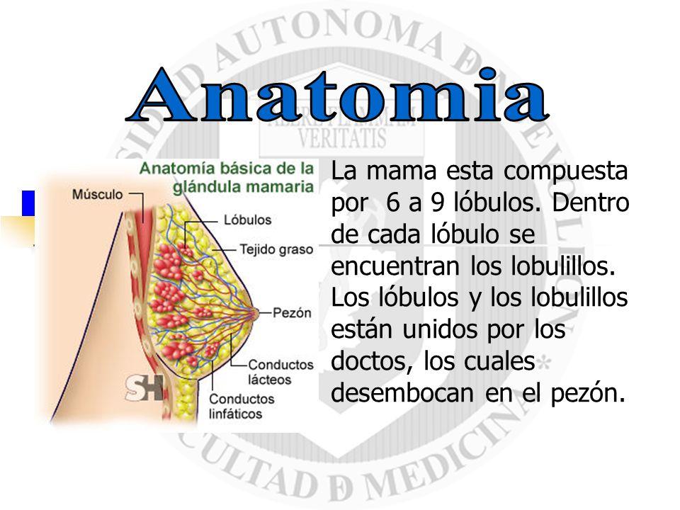 Es la proliferación acelerada, desordenada y no controlada de células pertenecientes a distintos tejidos de una glándula mamaria.