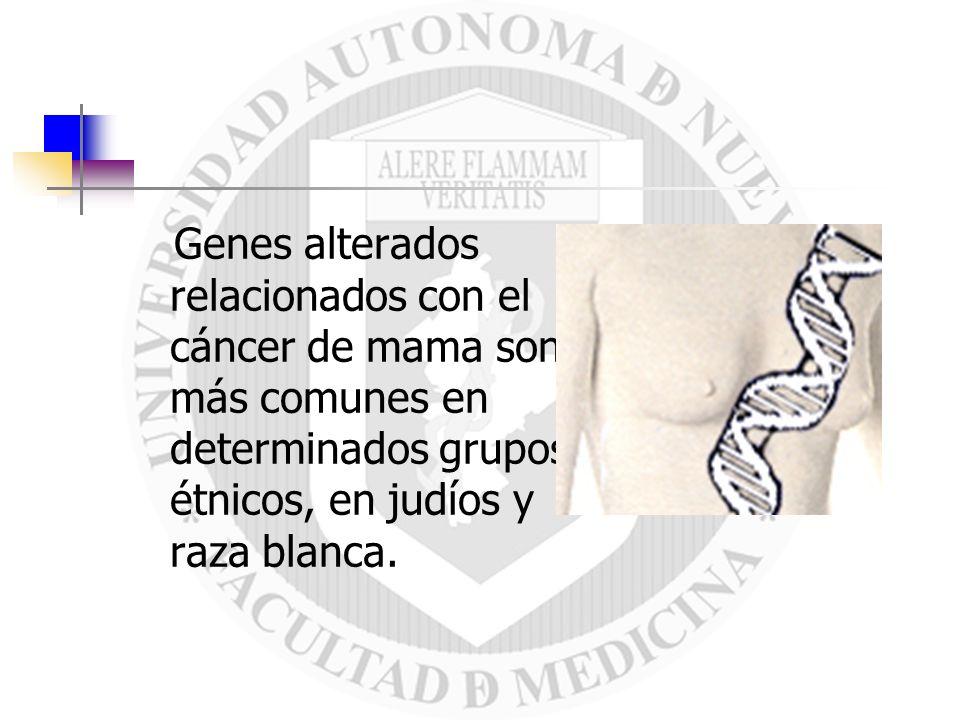 El 80-90% de los cánceres de mama son carcinomas ductales, los cuales se originan en los conductos de leche que llegan hasta el pezón.