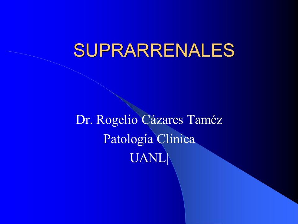 SUPRARRENALES Dr. Rogelio Cázares Taméz Patología Clínica UANL|