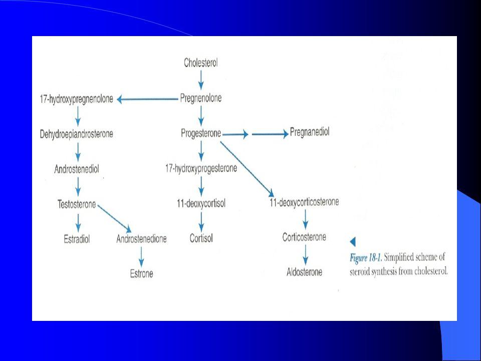 Hipocortisolismo Hiponatremia Hiperkalemia Acidósis metabólica Prueba de estimulación con ACTH