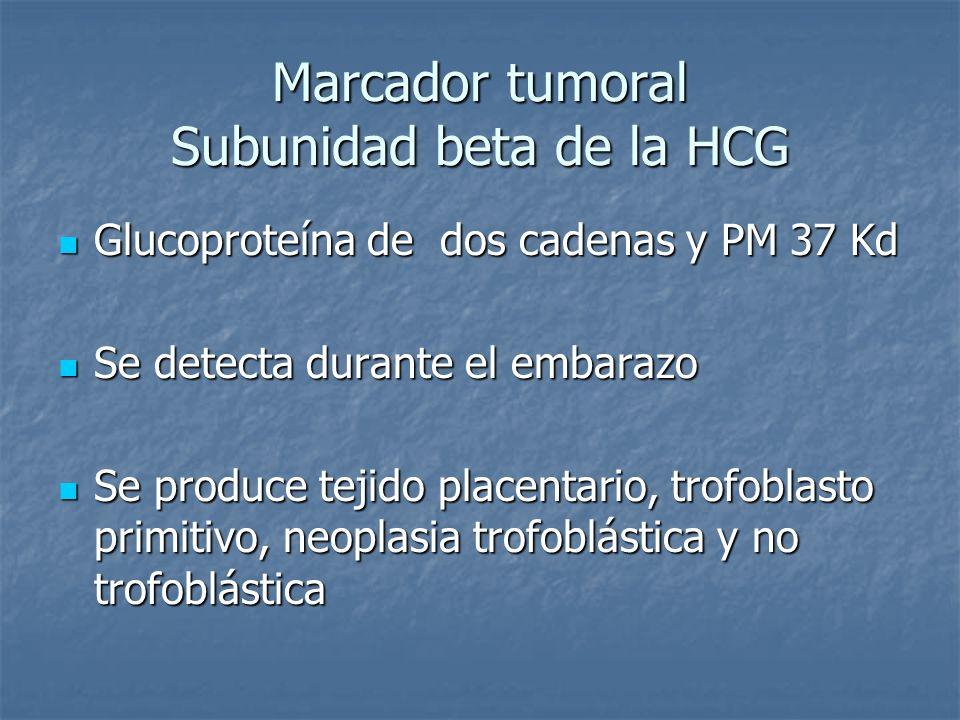 Marcador tumoral Subunidad beta de la HCG Glucoproteína de dos cadenas y PM 37 Kd Glucoproteína de dos cadenas y PM 37 Kd Se detecta durante el embara