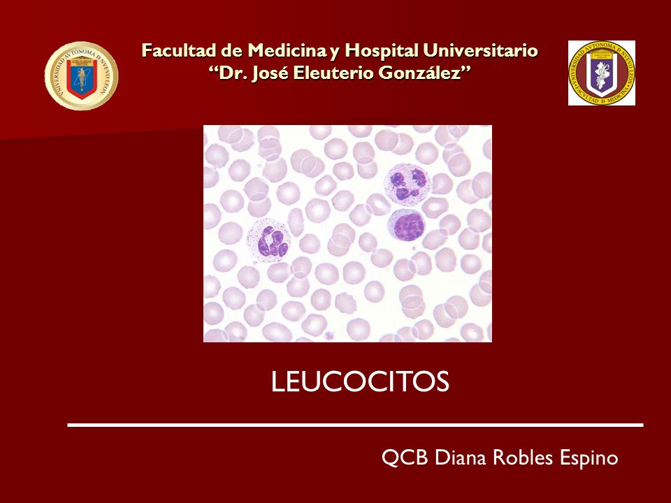 Leucocitos 4000/mm3 Leucocitos 4000/mm3 Linfocitos 40% = 1600/mm3 Monocitos 5% = 200/mm3 Eosinófilos 3% = 120/mm3 Basófilos 2% = 80/mm3 Neutrófilos 50% = 2000/mm3 Total 100% = 4000/mm3 Ejemplo de Cifras Absolutas de Leucocitos