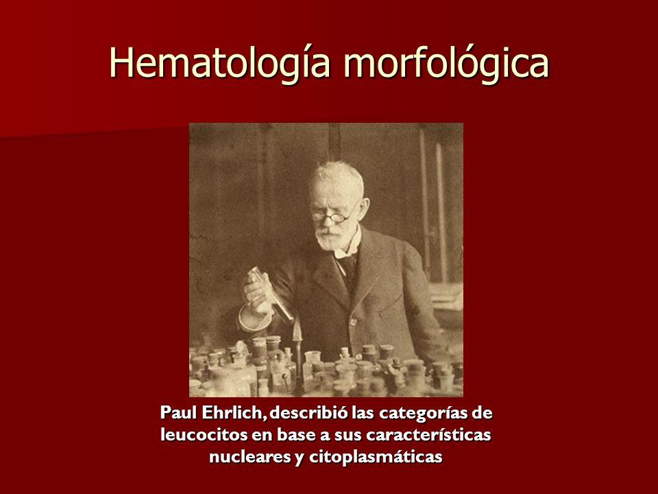Hematología morfológica Paul Ehrlich, describió las categorías de leucocitos en base a sus características nucleares y citoplasmáticas