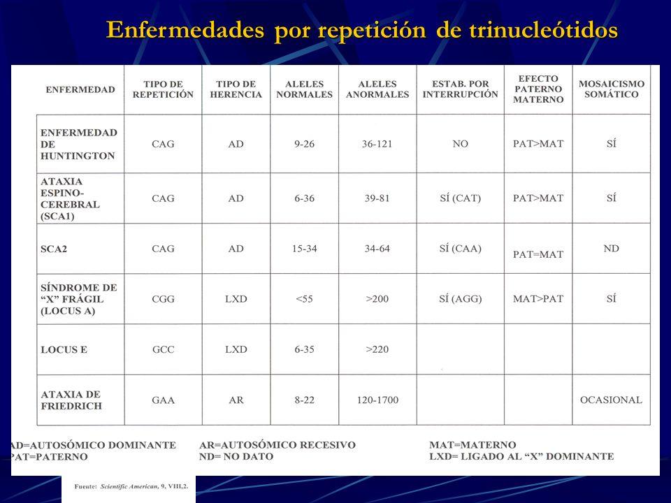 Enfermedades por repetición de trinucleótidos